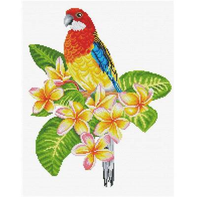 Perroquet Rosella - Kit point de croix - Needleart World